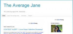 blogger not average jane