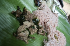 Rice cooked inside bamboo, native chicken cooked with ginger and malunggay leaves, char broiled fish. Our lunch prepared by the Aetas.