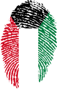 Voting on Elections on Kuwait December 5